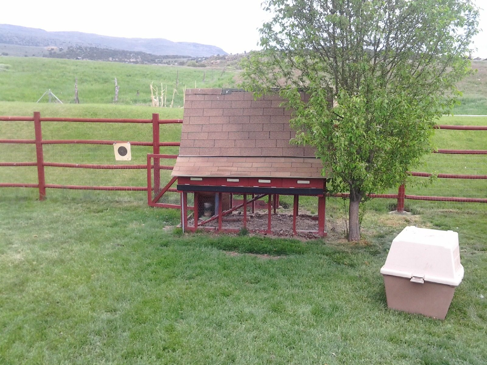 Open Perch to Ground Coop