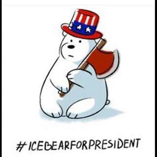 #IceBear4President.jpg
