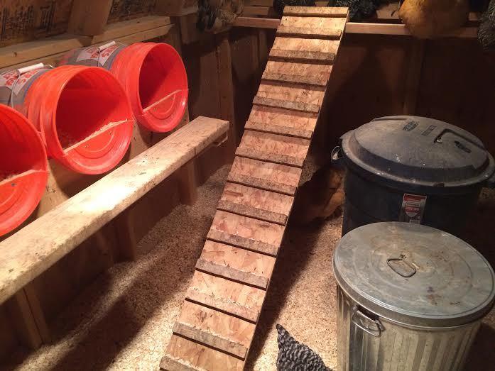 Roost Ladder