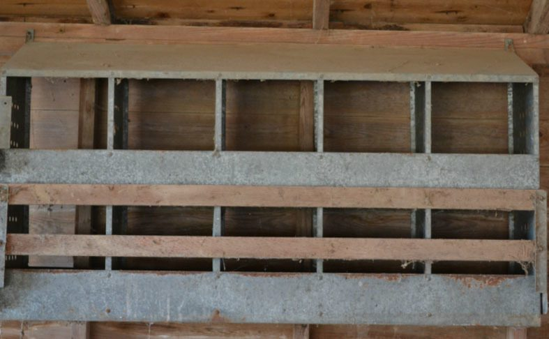 Eggstravert's photos in How do I set up these nesting boxes?