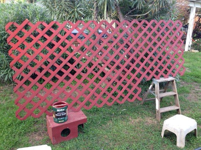 Painting a trellis which became part of the chicken yard enclosure. Never underestimate the time it takes to paint a trellis...!