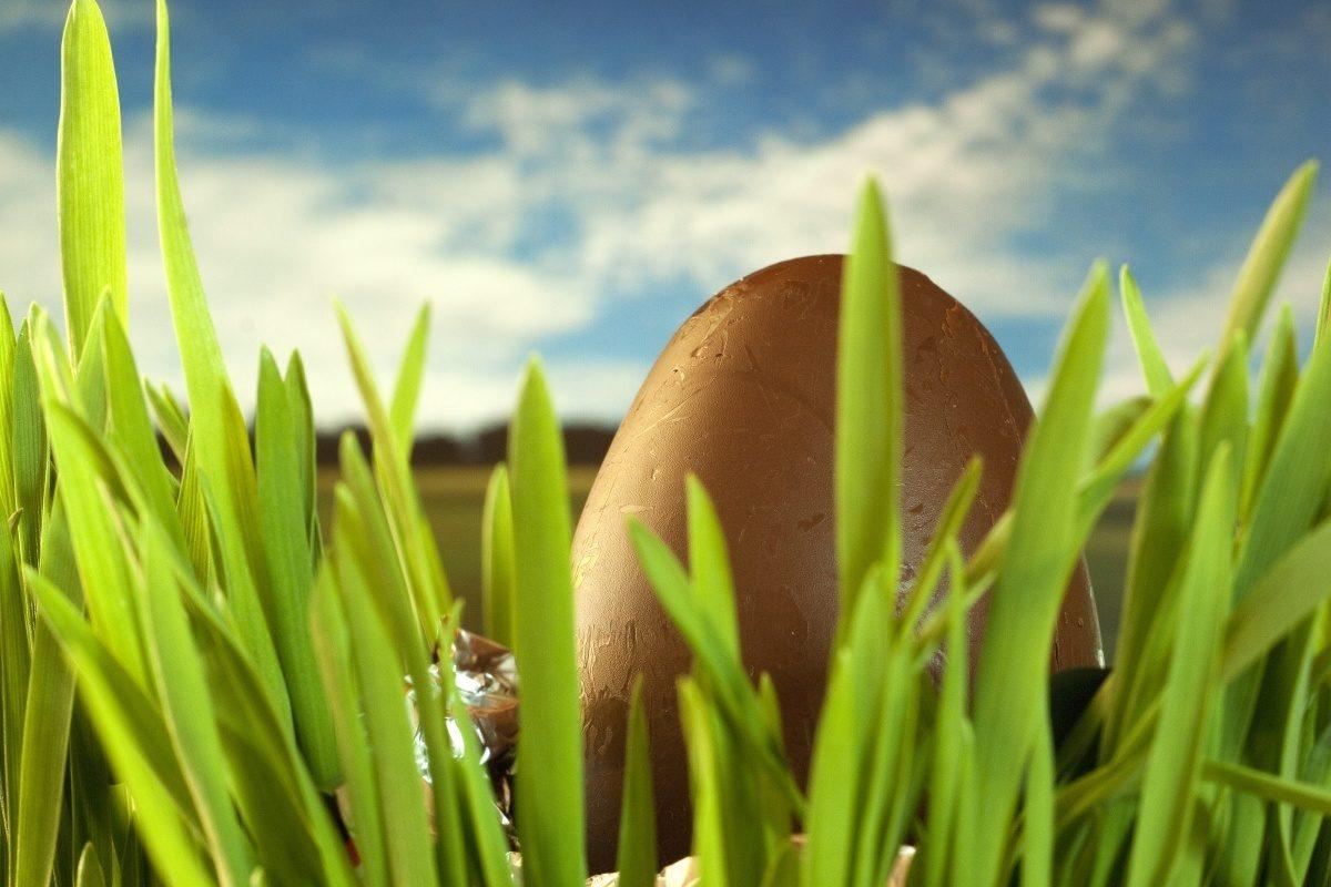 Chocolate-egg-grass-1300795623_65.jpg