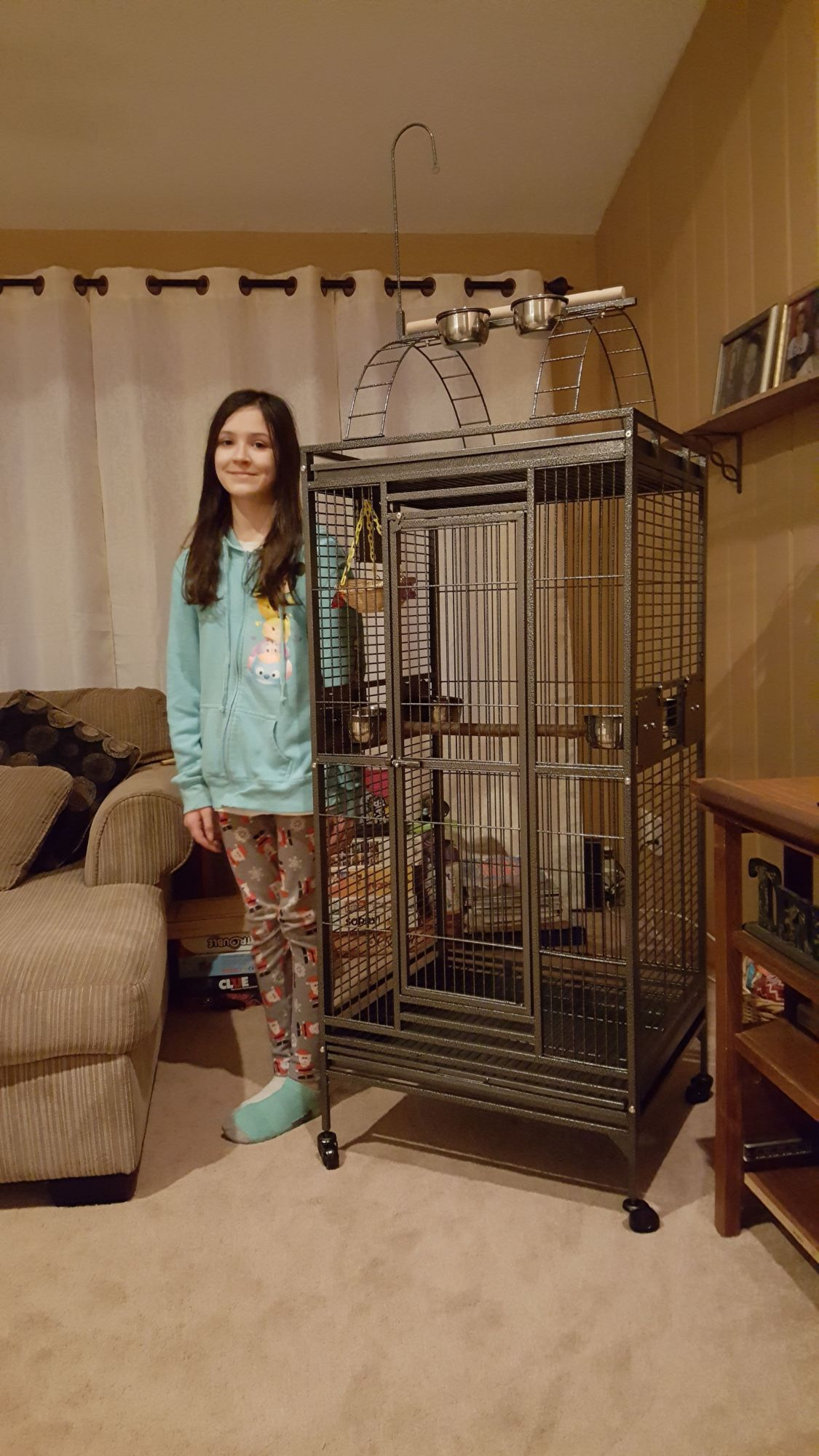 chicken pickin's photos in Hello! New to the indoor caged bird section.