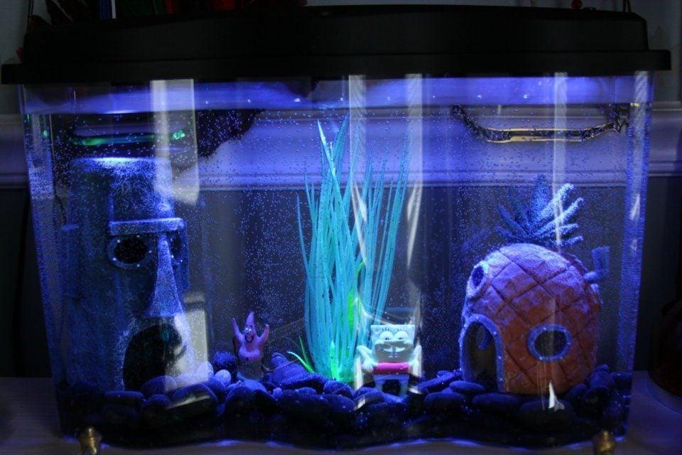 ... aquarium fish tank (Marine / Saltwater Theme Style) Update 2017 - Fish