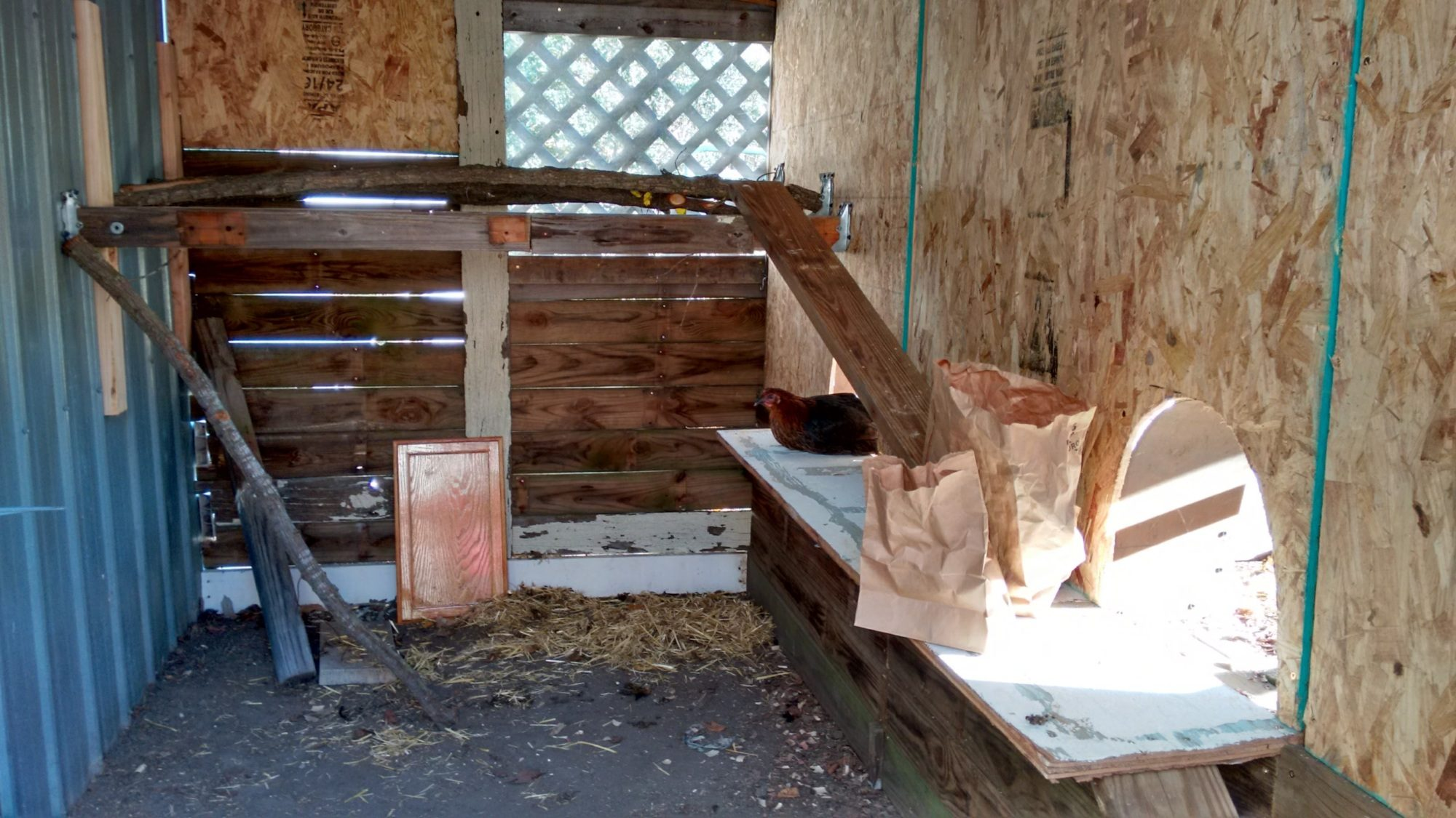 Making the 'hen house'.