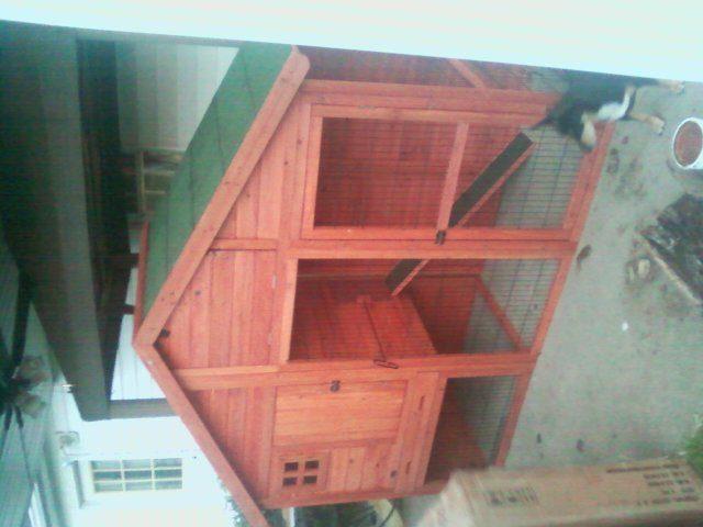 quail cage fin.htm