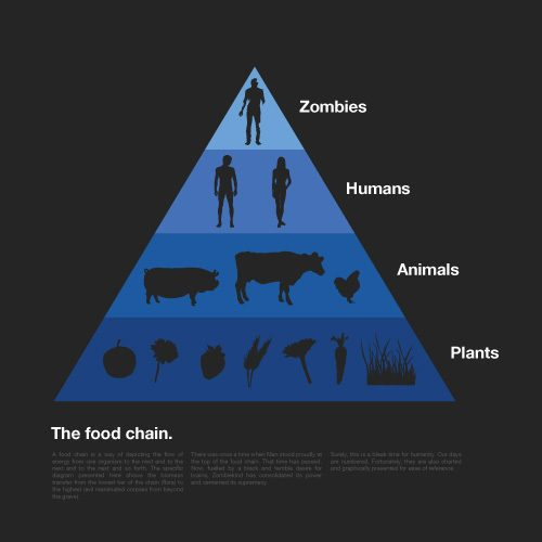 food_chain.jpg