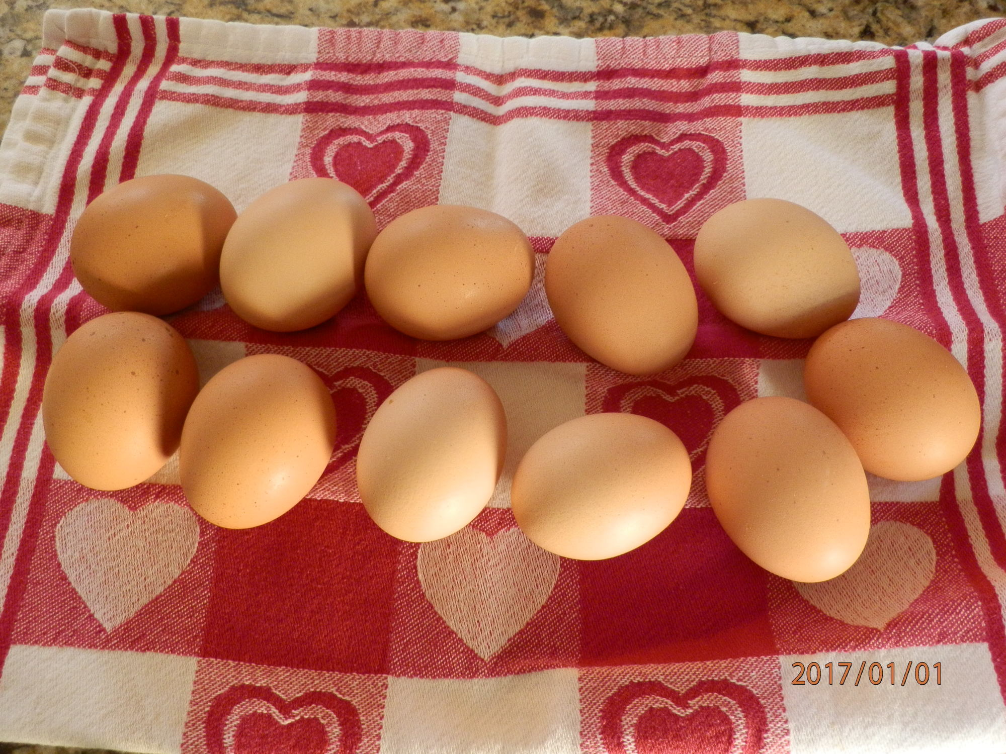 Our Chicken eggs