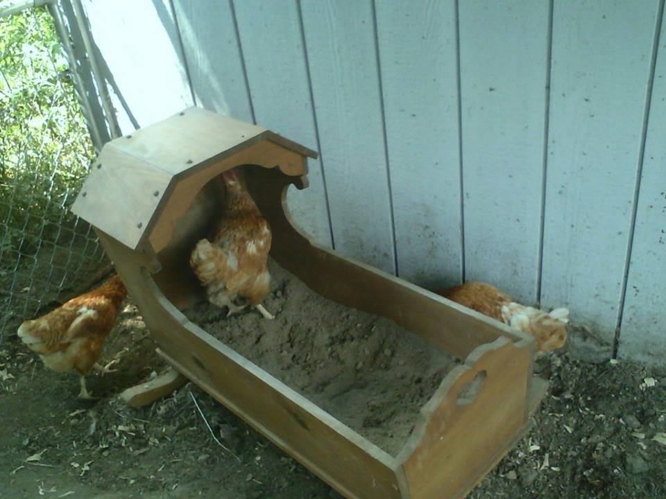 used an old cradle for a dust bath