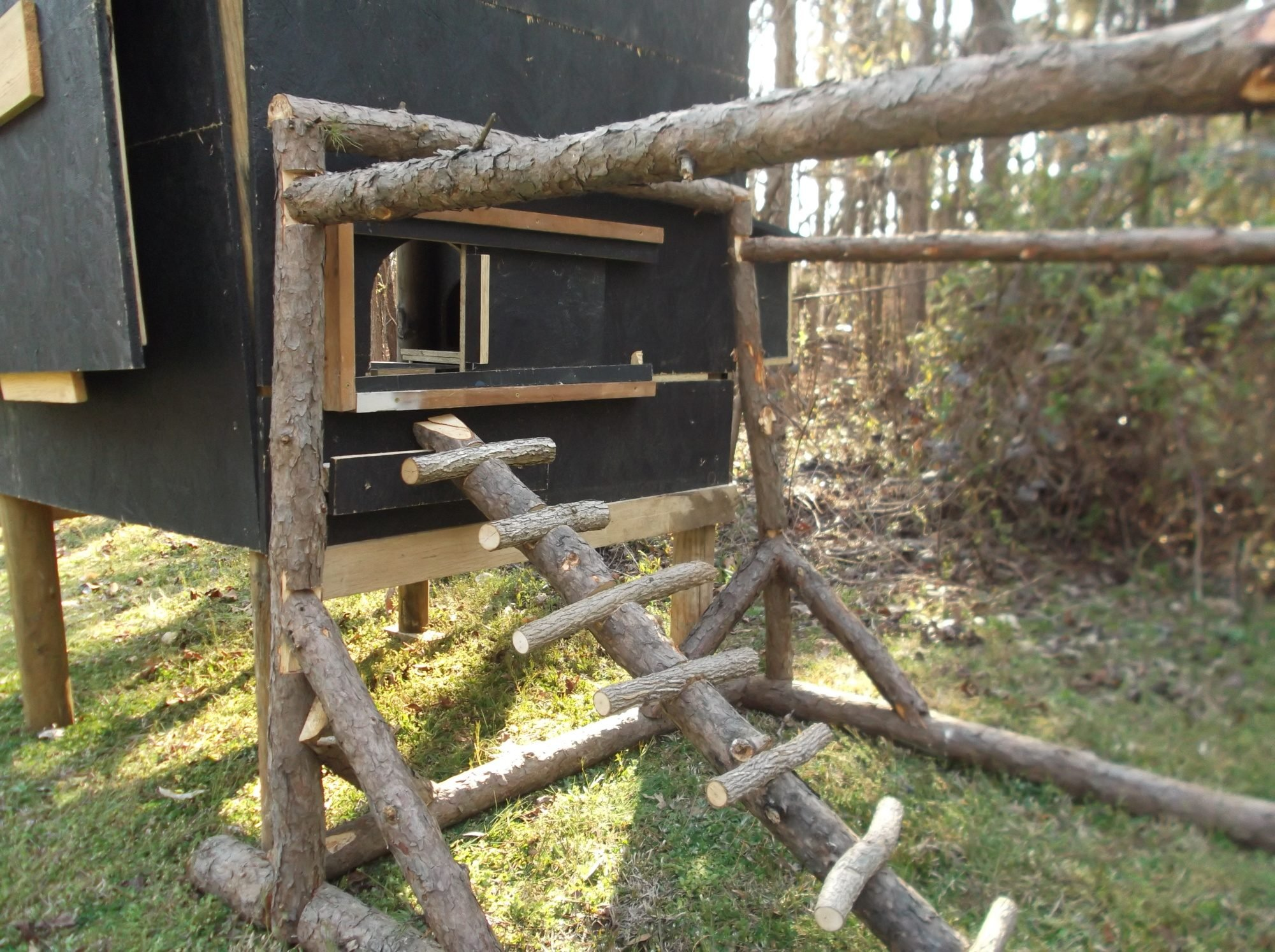 i made the ladder out of scrapplings from trees