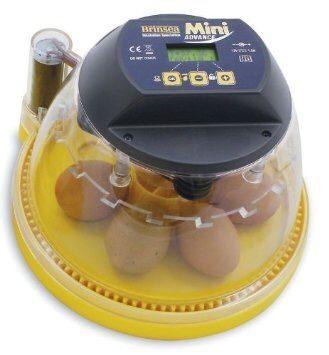 Brinsea Mini Advance Incubator