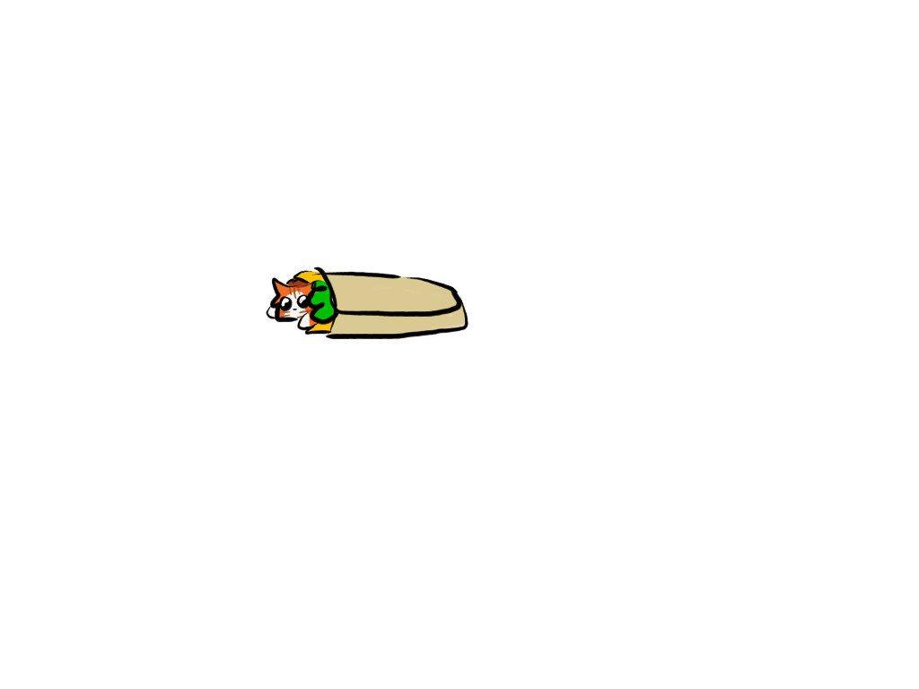 Burrito cat.jpg
