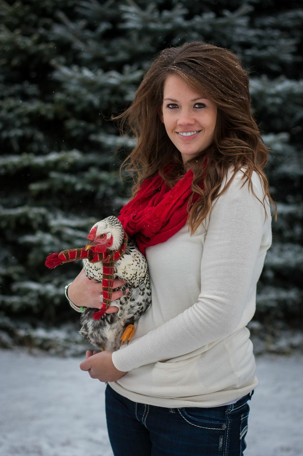 Lace's christmas photo shoot 2013