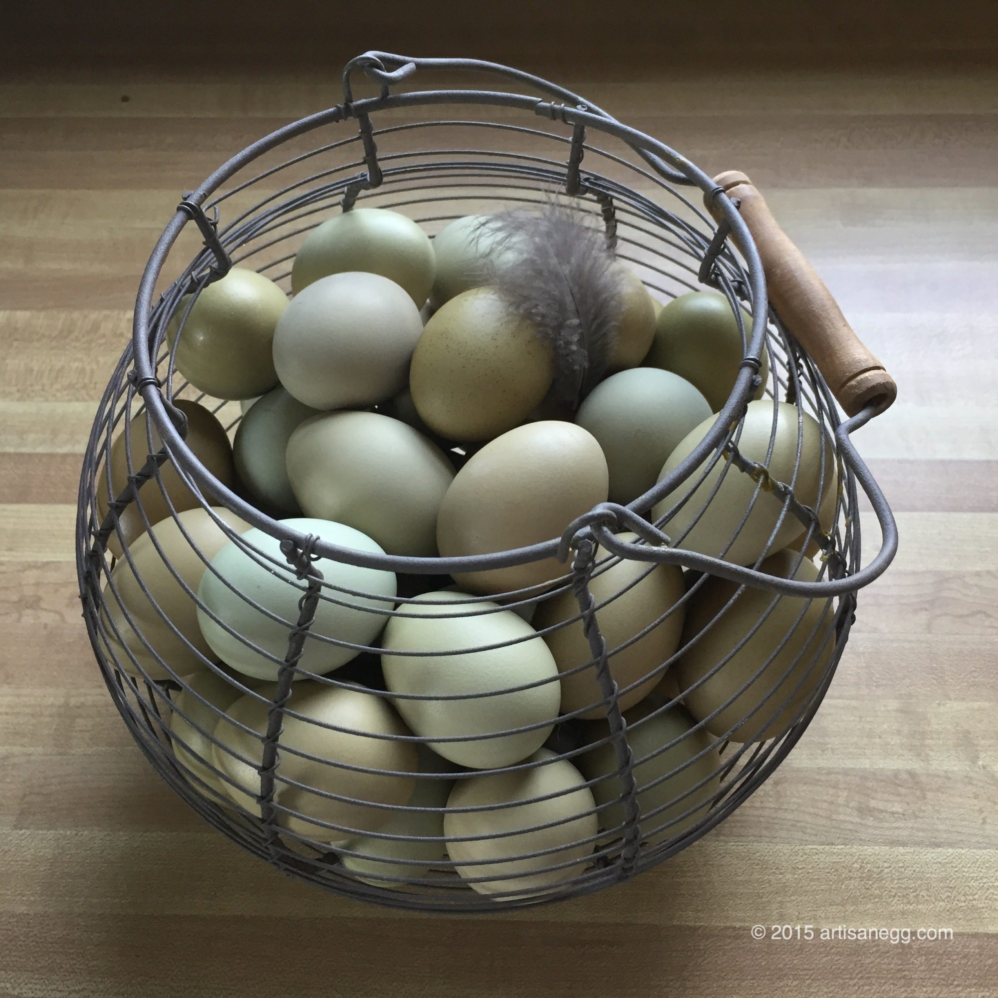 My Girl's Eggs