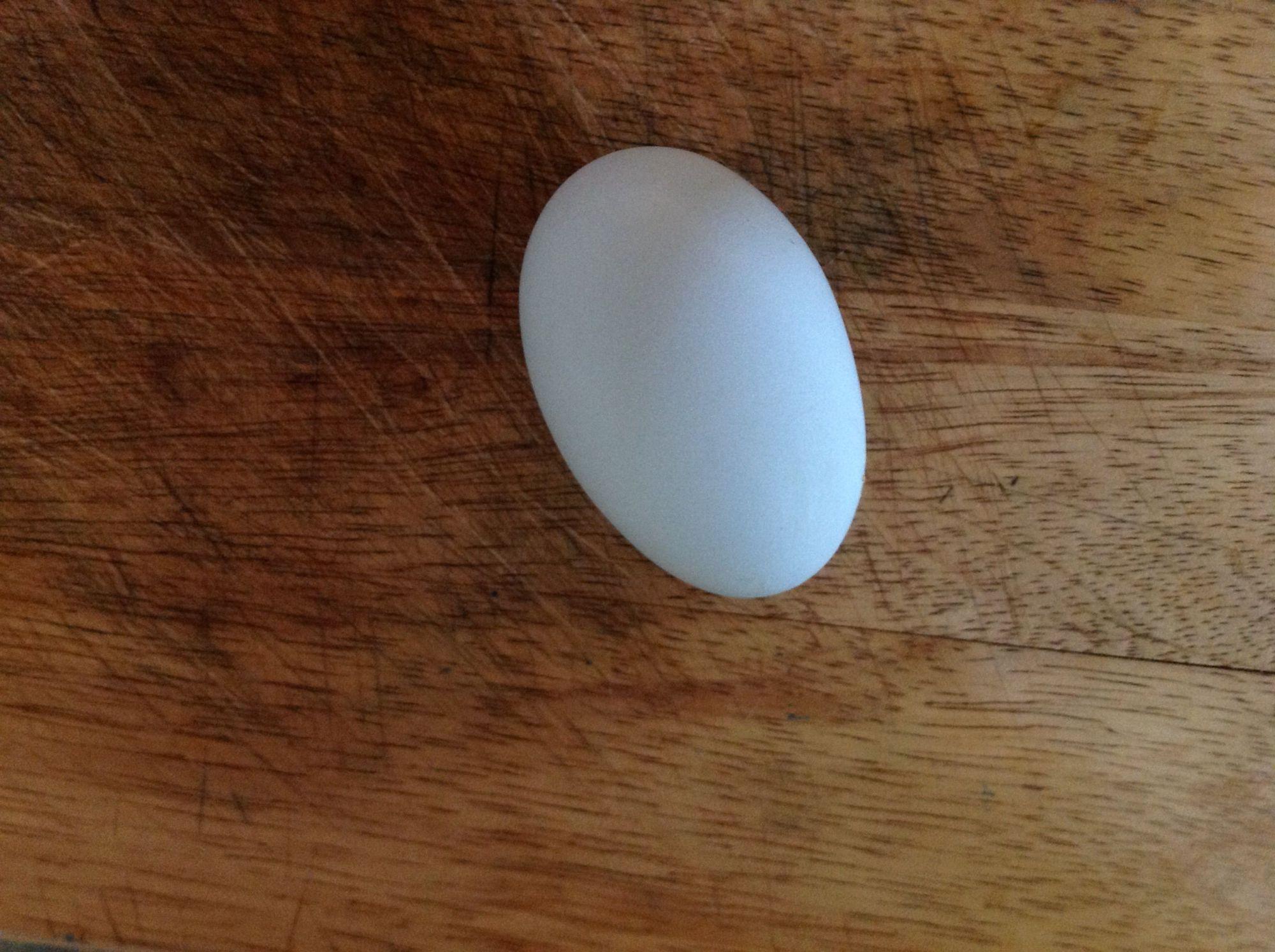 First Blue egg