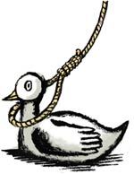 021024_duck-noose.jpg