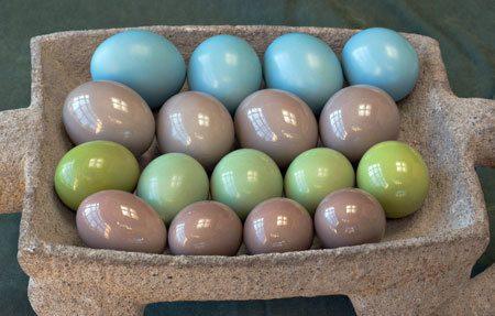 1002-eggs-a.jpg