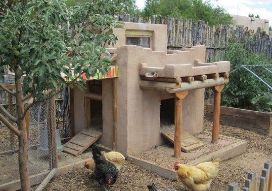 Adobe chicken coop