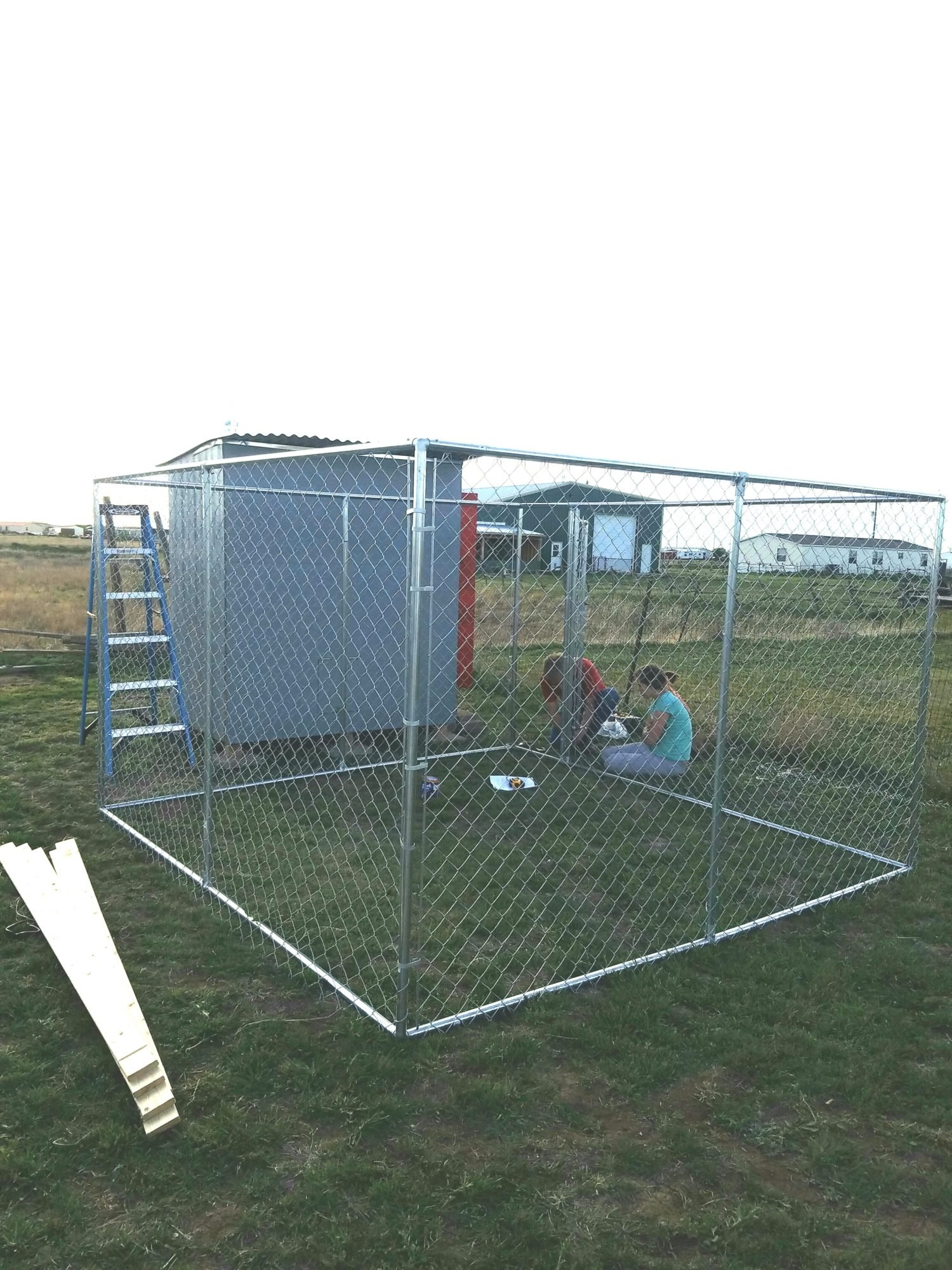 Our Hand built Coop