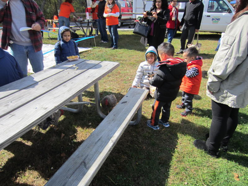 RAnst4038's photos in Doms Mobbed At Fall Fests
