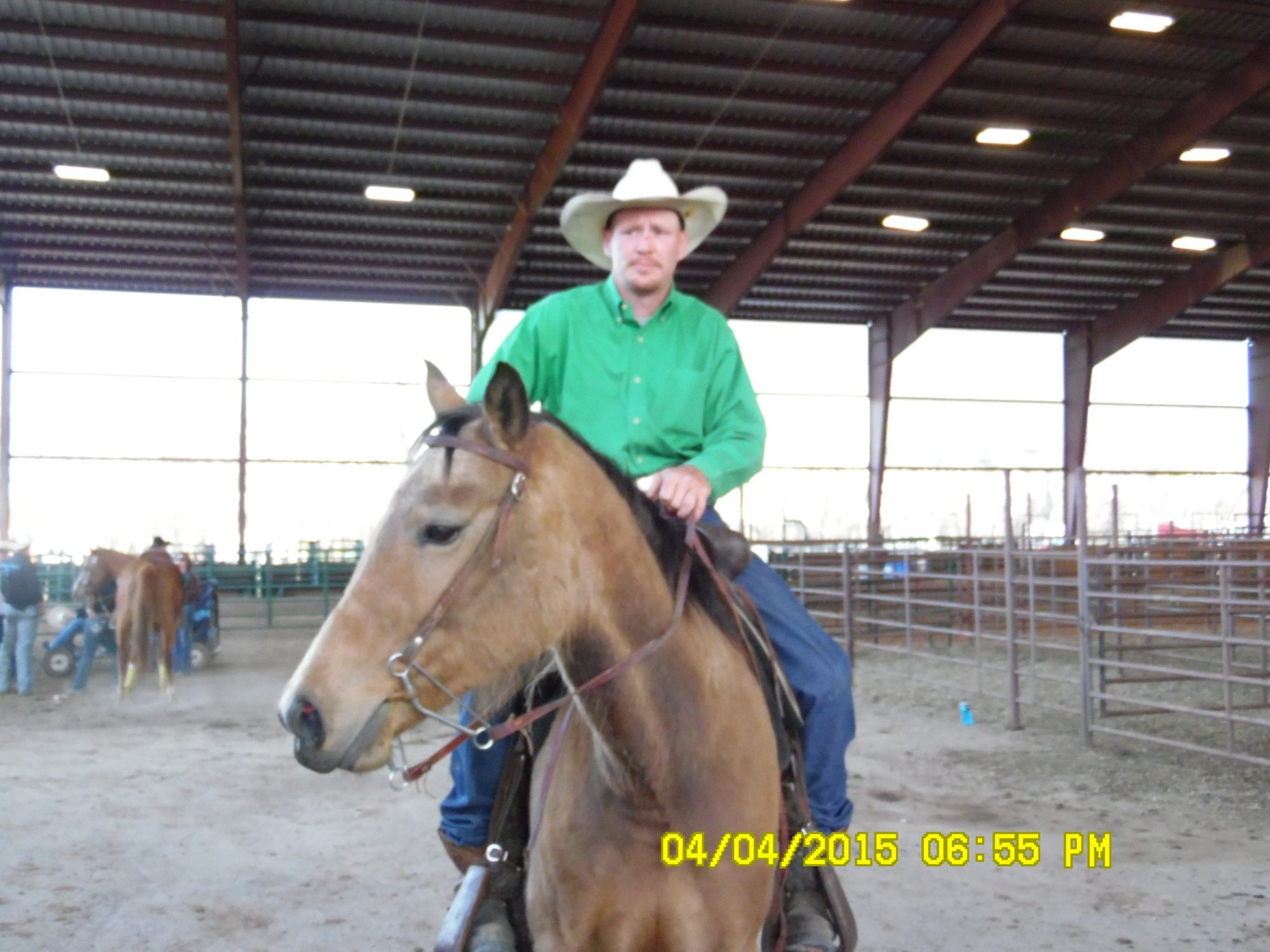 CLSranch's photos in Horses!!!!!!!!