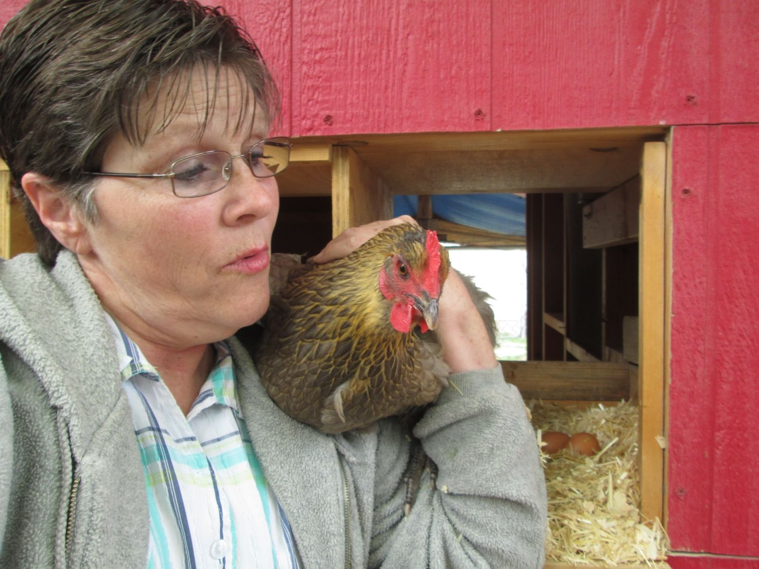 Cynthia12's photos in Selfies with Fowl a Contest thread for participants of the Springing in the Chicks Hatch A Long