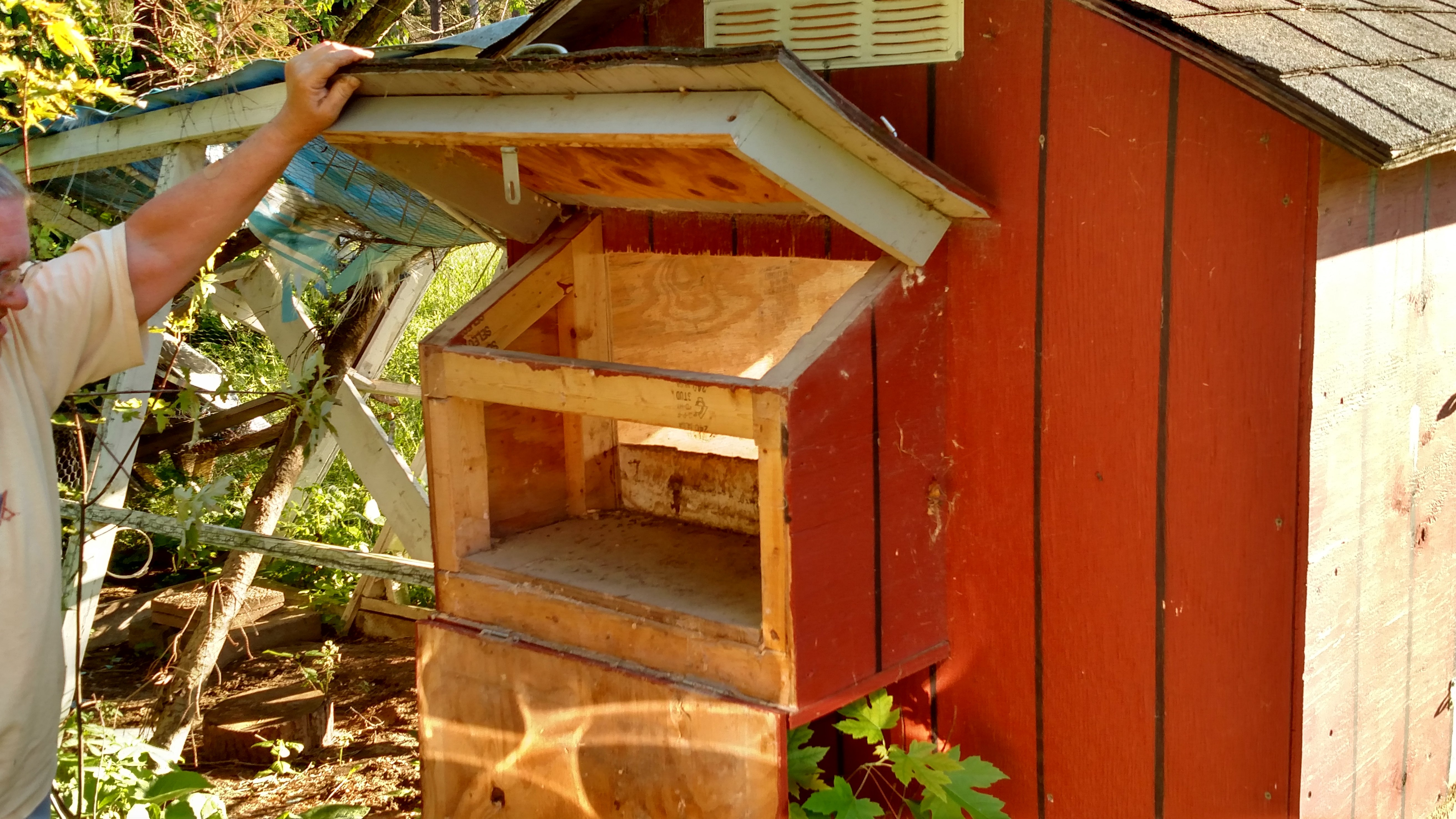 3riverschick's photos in Do nesting boxes need locks/latches?