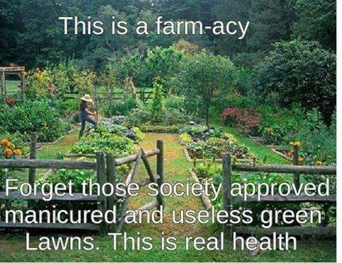 grow-food-not-lawns.jpg