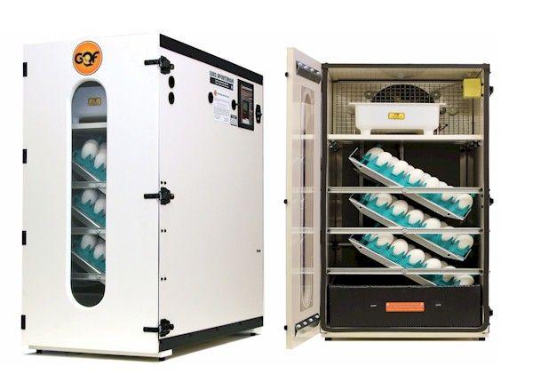Cabinet Egg Incubators