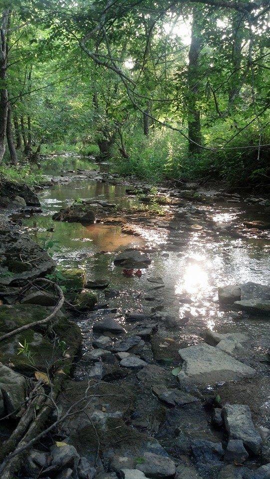 serenity creek.jpg