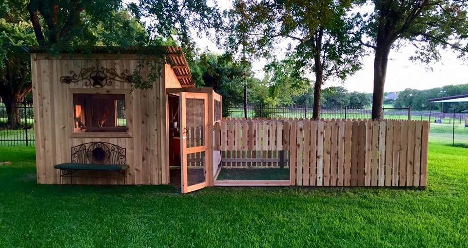 Building a Chicken Coop? Do's, Don'ts and Things to Consider.