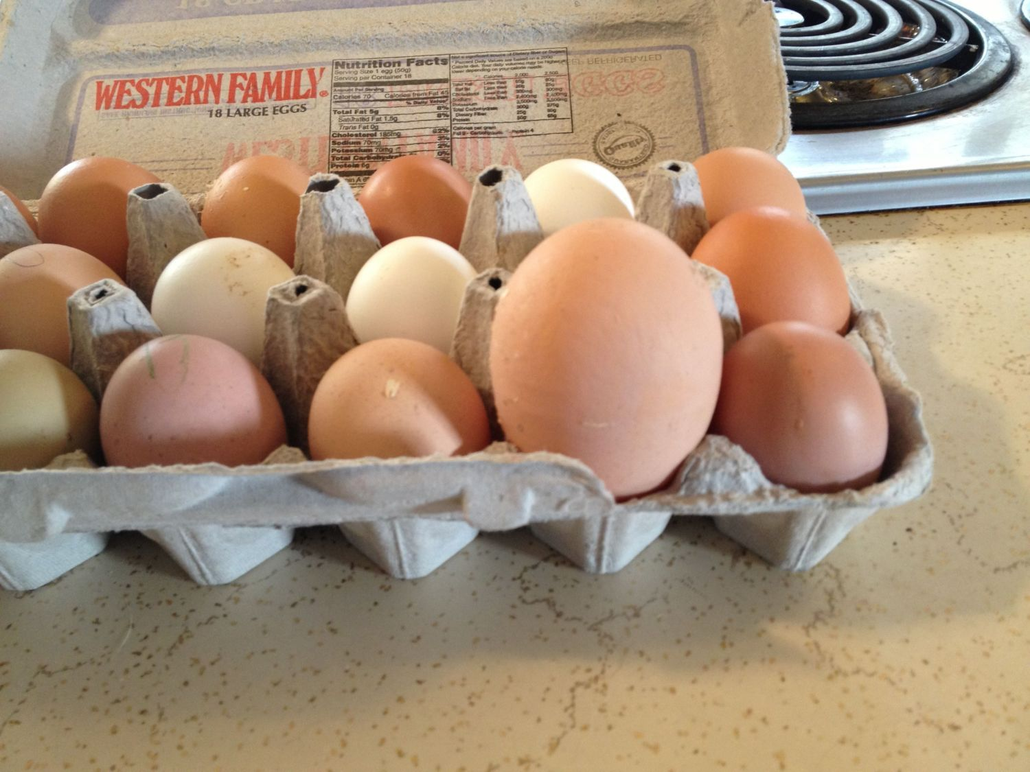 Souperchicken's photos in Abnormally large eggs