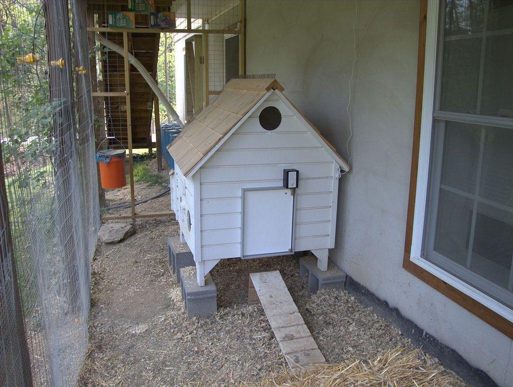 Pullet-Shut Automatic Chicken Door
