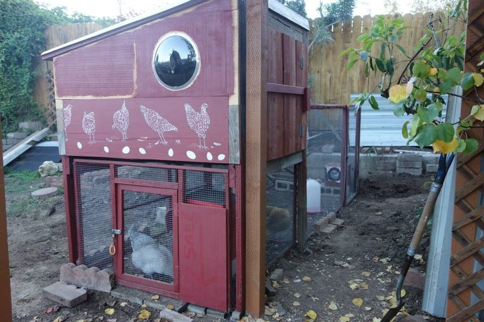 The new coop is all sealed up! Also, the posts for the door to the chicken yard are in.
