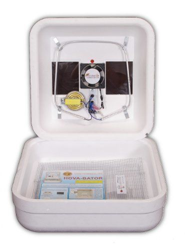 Hova Bator Egg Incubator 1602N with Circulated Air Fan Kit