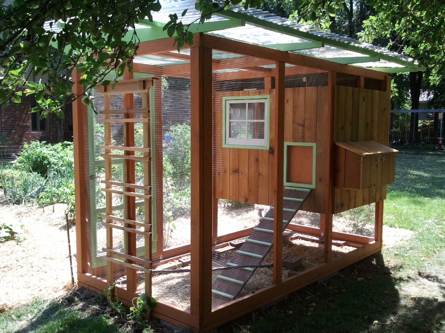Backyard Chickens Coop : Of course, no coop is complete without chickens! We have 4 hens