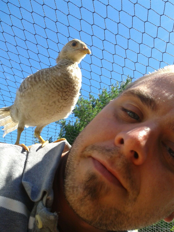 birdman55 profile picture