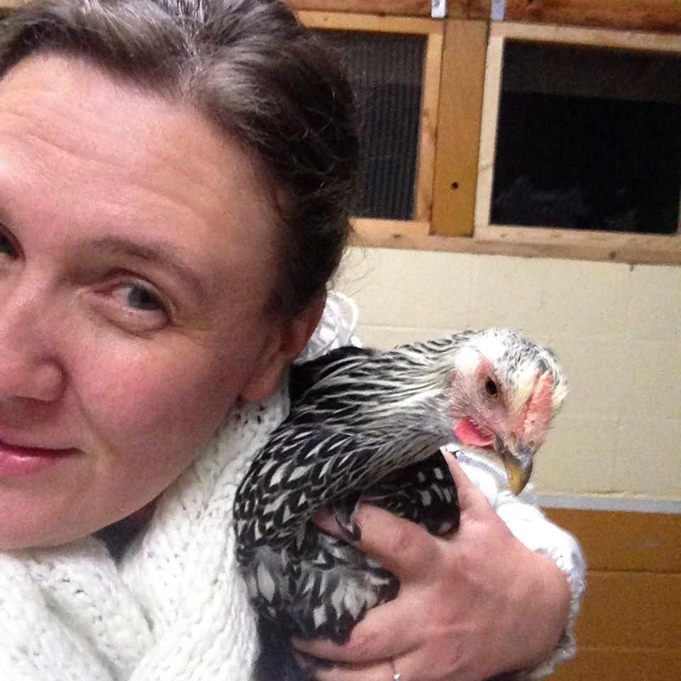 "It's a ""Chelfie""!  (Chicken selfie)"