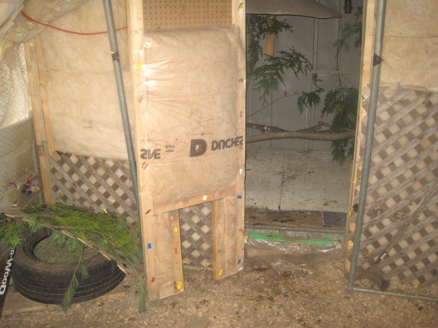 with door open. shed has been reinforced and insulated for winter. has a heat light if needed