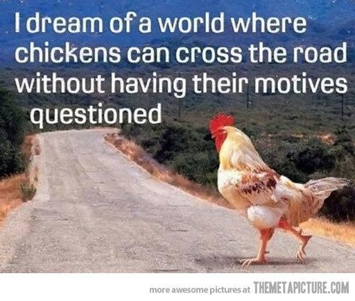 funny-chicken-crossing-the-road.jpg