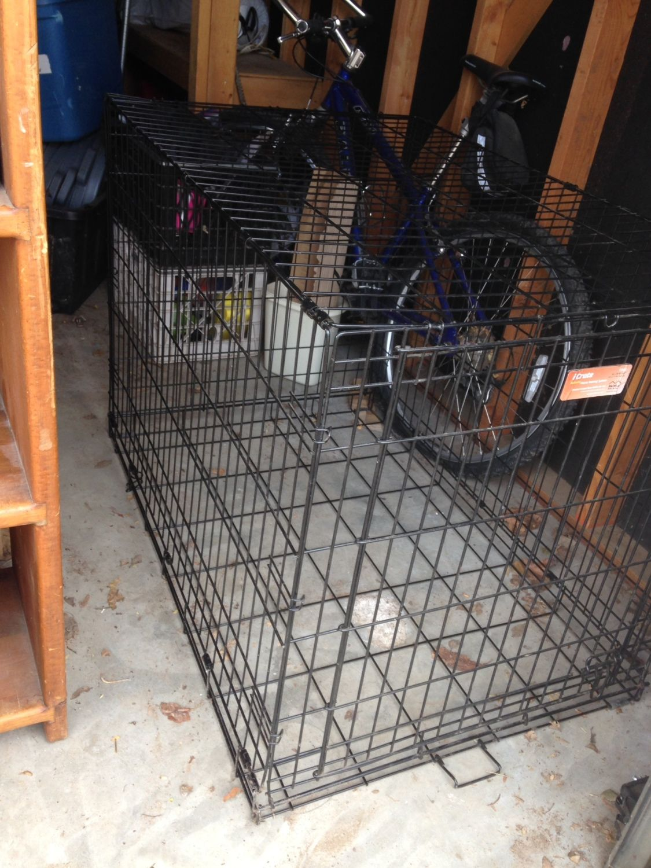 My dog kennel brooder