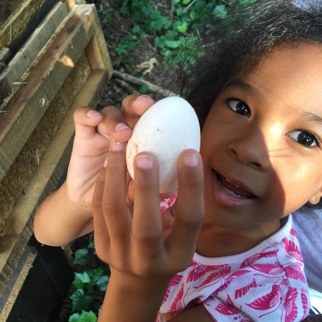 Our first egg.