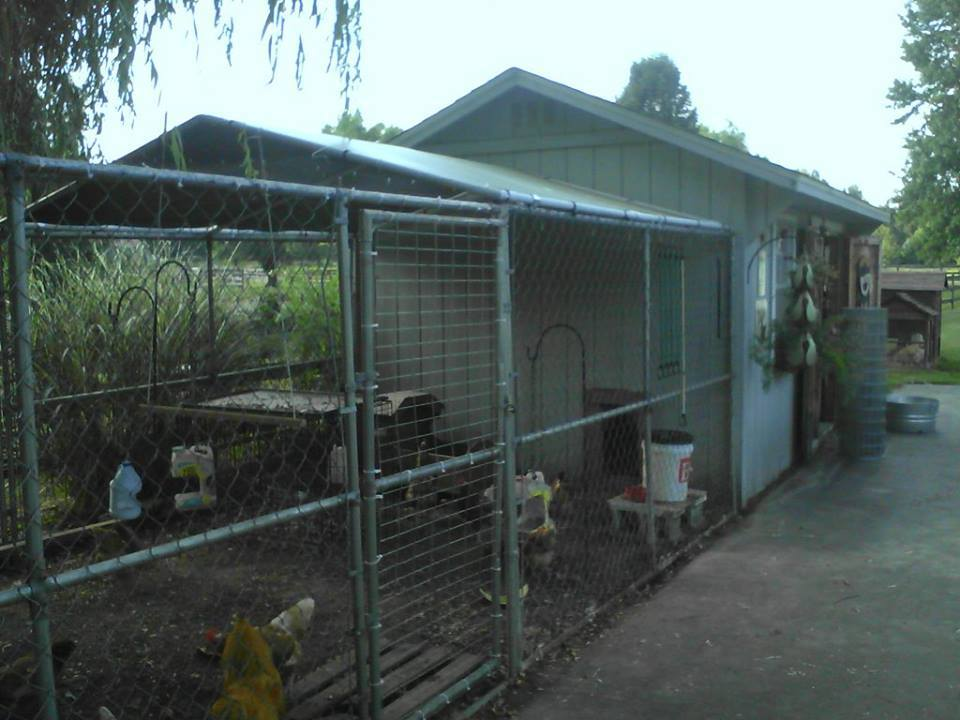 dog run added to the end of the shed