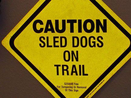 sled-dog-ontrail.jpg