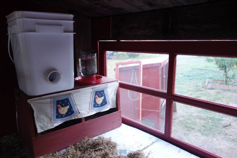 I had read that hens like curtains in front of their nesting boxes. I sewed them some curtains, using some chicken fabric I had!