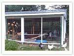 chicken-coops-incubator.jpg