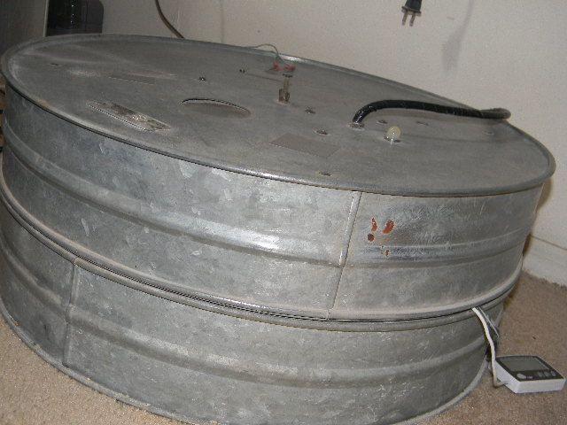 sanded brower incubatro 003.JPG