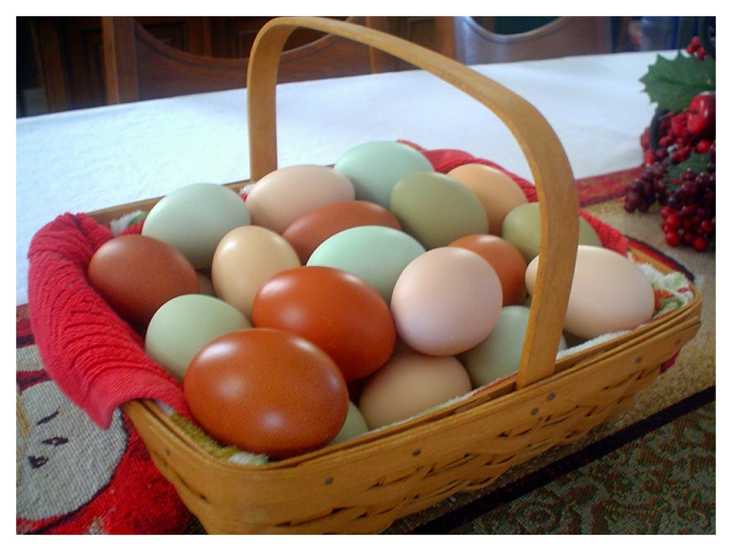 Gardeningmama's photos in Contest #14 Natural Egg Photo Contest  2014 Easter Hatch-a-long!