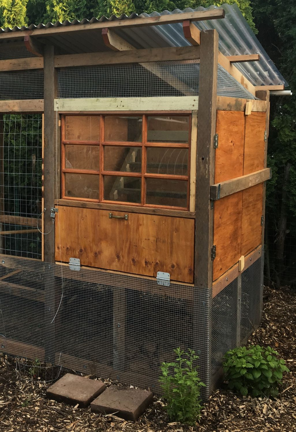 An Oregon Backyard Coop for 5