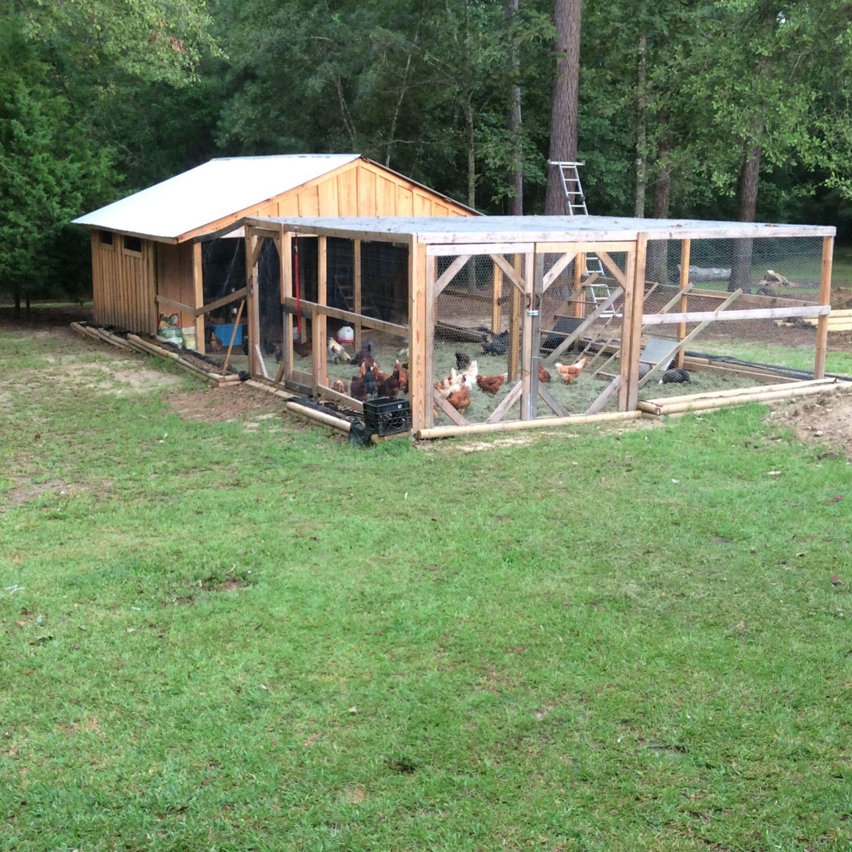 New coop
